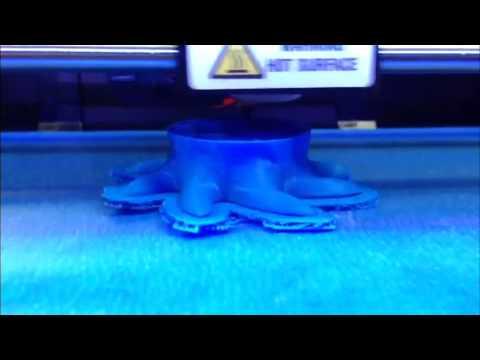 3D Printing an Octopus