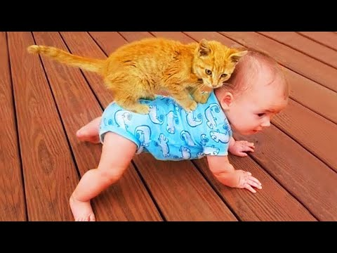 Funny Cat Videos  - Baby and Cat Fun and Cute - Funny Baby Videos