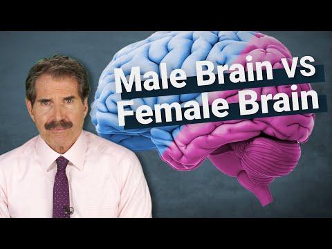 The Science: Male Brain vs Female Brain
