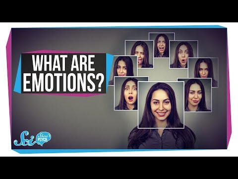 What Makes a Feeling an Emotion?