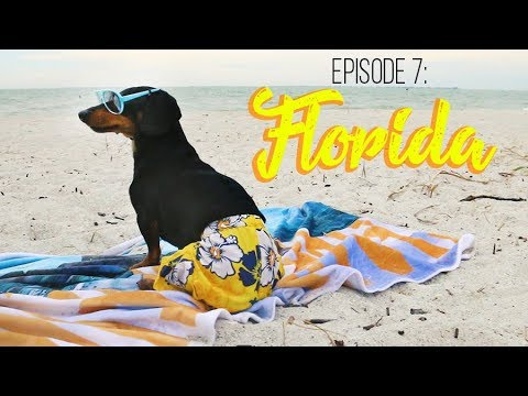 Episode 7: Florida Fun, Guest Appearance from Oakley & Paisley