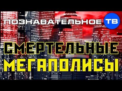 Смертельные мегаполисы (Познавательное ТВ, Михаил Величко) (видео)