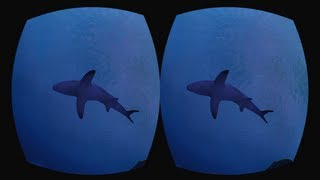 Ocean Rift – Tauche unter in VR