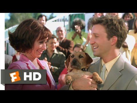 Garfield (3/5) Movie CLIP - Odie Steals the Show (2004) HD