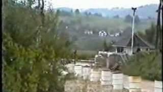 Danbat Dvor 1995, 9 af 9