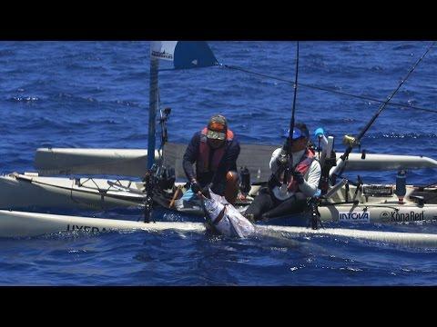 150-lb Marlin Caught from Kayak