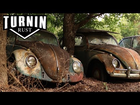 HUGE Abandoned Volkswagen Collection Found after 40 YEARS!!   1960 VW Beetle   Turnin Rust
