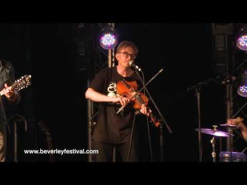 King Courgette @ Beverley Folk Festival 2016