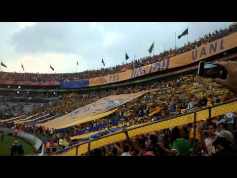 Recibimiento Tigres vs Emelec | Copa Libertadores - Libres y Lokos - Tigres