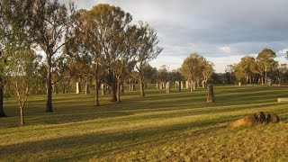 Glen Innes Australia  City new picture : Occult Glen Innes - Australian Standing Stones and Further Esoteric Symbolism