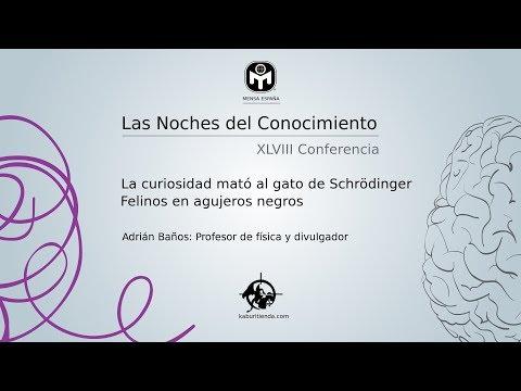 Frases celebres - La curiosidad mató al gato de Schrödinger  Adrián Baños  Mensa España