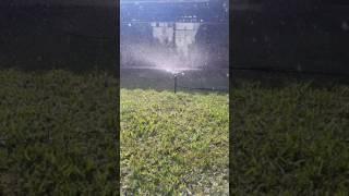 Microaspersor de larga distancia Marca POELSAN