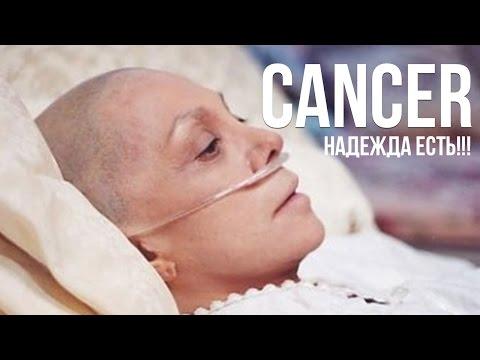 Разработано эффективное лекарство против рака почки