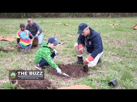The Buzz: Tree Reforestation at Bristoe Station Battlefield Heritage Park