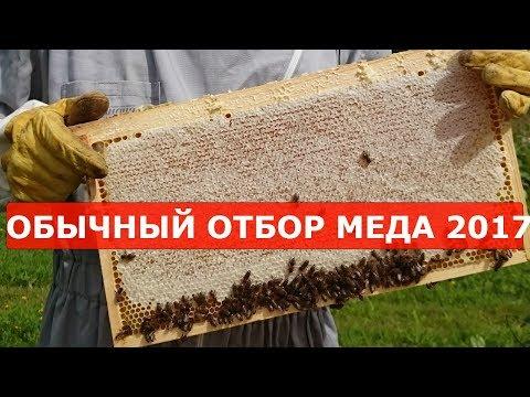 отбор меда у семьи вышедшей из зимовки на воле на 5 улочках