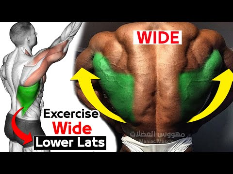 Daily Exercise To Build Lower Lats (V TAPER)