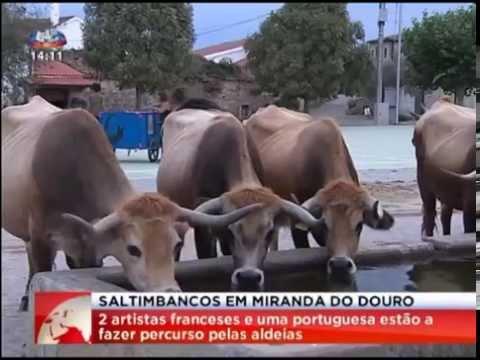 Saltimbancos em Miranda do Douro