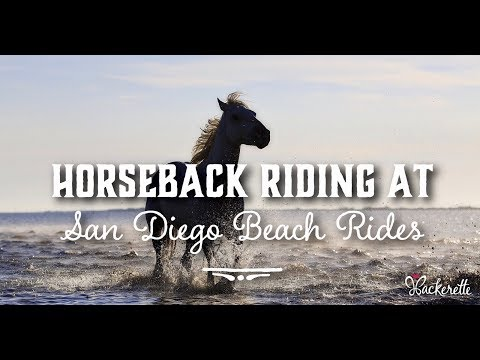 Horseback Riding at San Diego Beach Rides