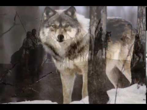jeux wii l'esprit du loup