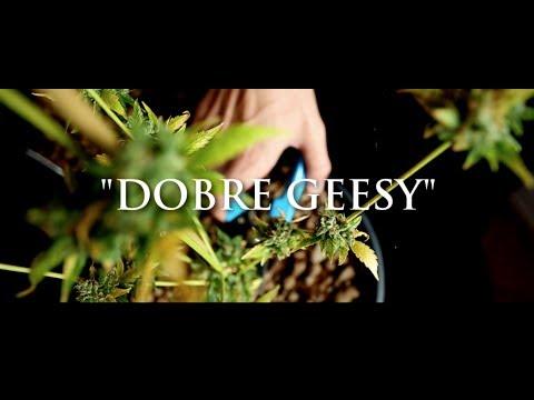 Tekst piosenki Ganja Mafia - Dobre Geesy (prod. PSR) po polsku