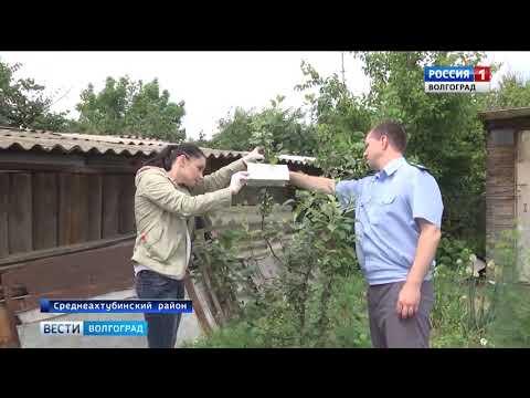 О проводимых рейдах Россельхознадзора в борьбе с вредителями в Волгоградской области