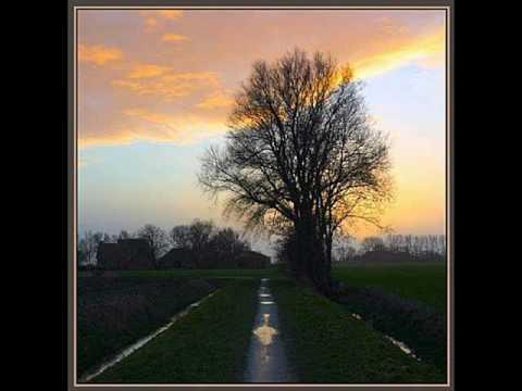 Virus - Sunshine to the Rain (Remix)