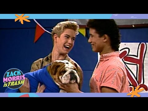 The Time Zack Morris Stole A Dog Then Slaughtered Countless Ants