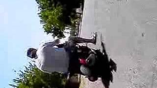 9. Honda helix chopper