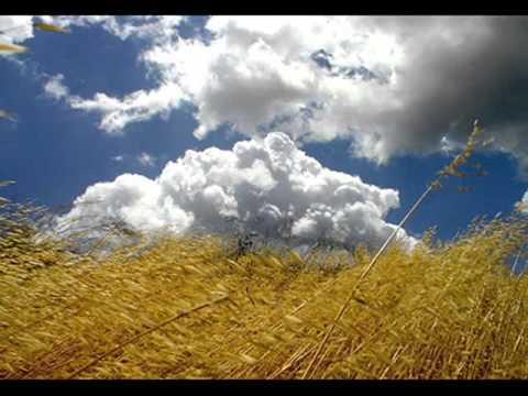 Tekst piosenki Umberto Tozzi - Sogno Cb po polsku