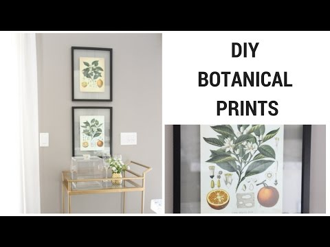DIY VINTAGE BOTANICAL PRINTS (видео)