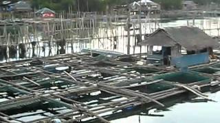 Hinigaran Philippines  city pictures gallery : Philippines, Hinigaran fish port