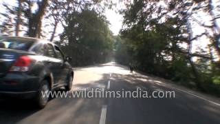 Kashipur India  city photo : Driving from Ramnagar to Kashipur - Peerumadara