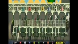 HnR 's Living the Life wins 1st U.S. Start @Del Mar