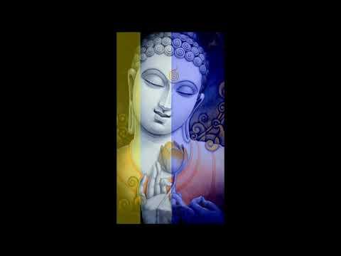 Lục Hòa (Bài 20) Thích Hạnh Định