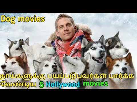 Hollywood best dog related comedy movies   tamil   tubelight mind  