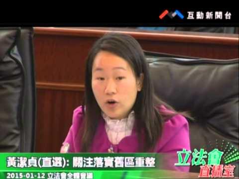 黃潔貞-20150112立法會全體會議