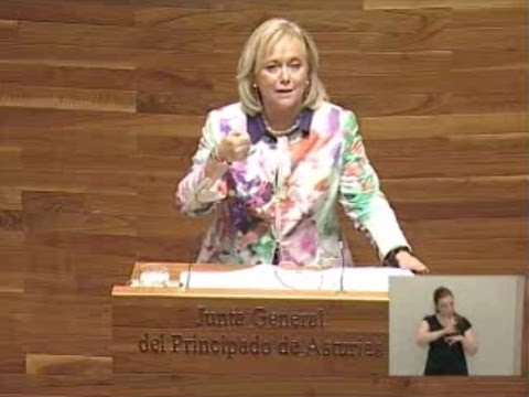 Intervención de Mercedes Fernández sobre política industrial