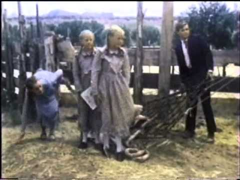 Child Bride of Short Creek (1981)