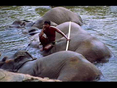 Sri Laka - lyric: Sunil Sarath Perera Created by : Aruna Abeywickrama.