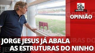 OPINIÃO: JORGE JESUS JÁ ABALA AS ESTRUTURAS DO NINHO