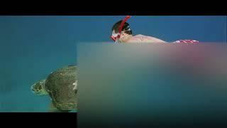 Lara Dutta - Blue Theme 720P [HD]
