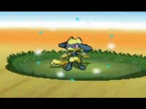0 - How To Get A Shiny Riolu In Pokemon Black 2