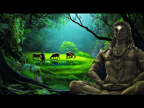 528Hz Energy CLEANSE Yourself & Your Home - Heal Old Negative Energies From Your House Frequency
