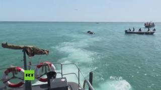 La Marina de Sri Lanka rescató a dos elefantes de morir ahogados en el mar. Tras ser vistos por una patrulla, un equipo de rescate acudió rápidamente al lugar ...