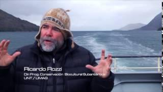 PROMO Cabo de Hornos 2015 - La joya del fin del mundo