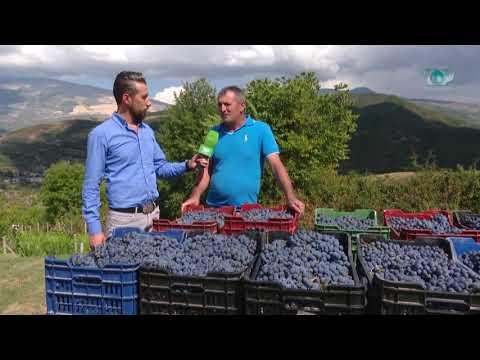 Ne Shtepine Tone, Pjesa 4 - 13/10/2017 - Promovim - Tradita e rrushit në Therepel