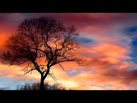 Video Stephen Dodgson Concerto for Flute & Strings (1991) download in MP3, 3GP, MP4, WEBM, AVI, FLV January 2017