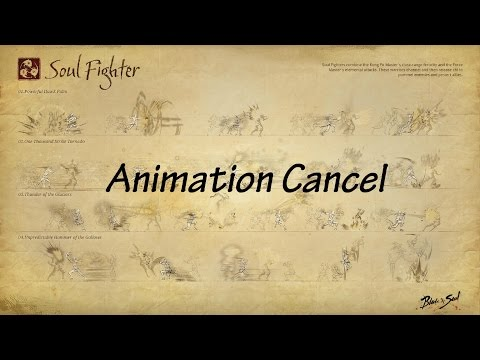 blade and soul soul fighter tutorial animation cancel non macro