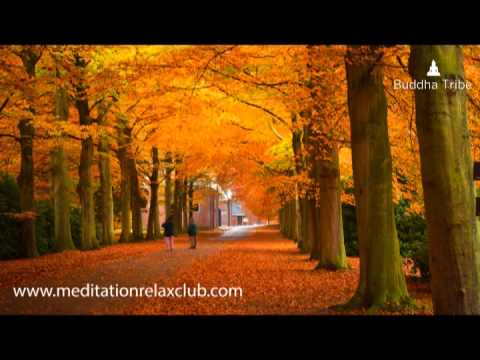 Thanksgiving – Thanksgiving Dinner Music, Thanksgiving Day Background Music