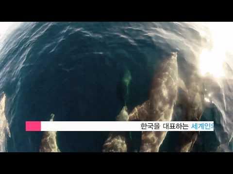 2015코리아컵요트대회 홍보동영상 한글버전 1분30초
